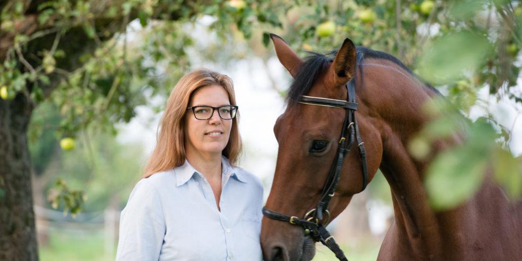 FAW Coaching mit Pferden